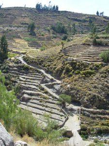 Qhapac Ñan: Andenes de Cuzco en el Camino
