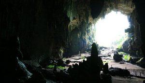Cueva de las lechuzas, Tingo María