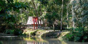 Parque Nacional Tingo María