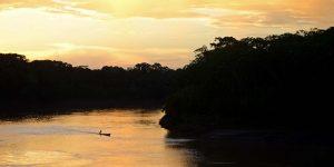 Madre de Dios: Reserva Natural Tambopata