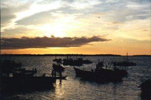 Islas del Perú: Puerto Pizarro