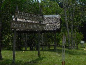 Iquitos Reserva