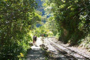Presupuesto para Machu Picchu: Hidroeléctrica