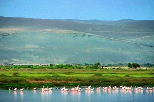 santuario nacional lagunas de mejia