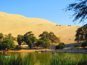 Huacachina Oasis 2