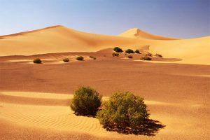 Peru vs Arabia Saudita Desierto