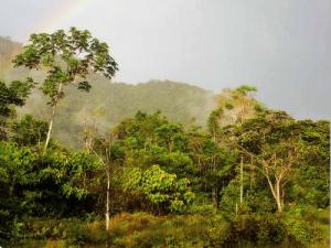 Selvámonos 2018 Reserva Comunal Yanesha