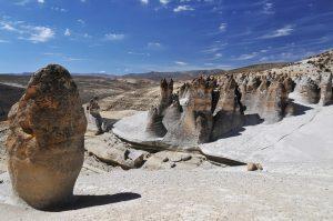 Arequipa: Reserva de Salinas y Aguada Blanca