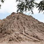 Huaca el Oro Bosque de Pómac