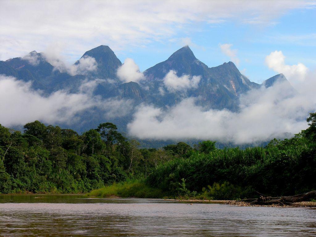Cordillera azul