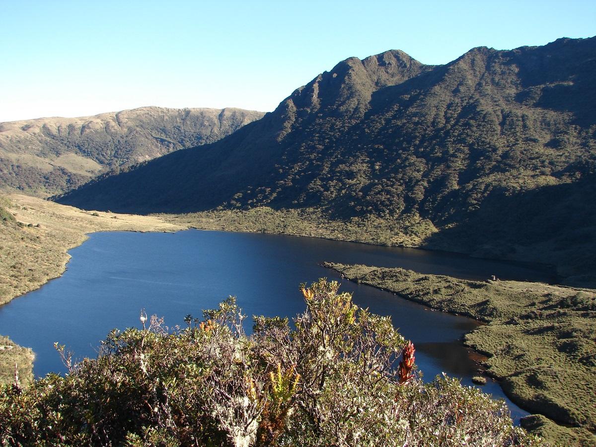 santuarios nacionales del Perú