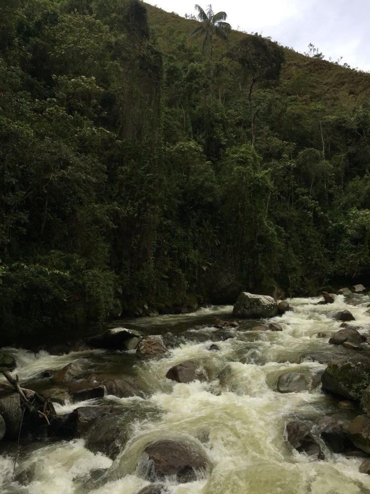 Santuario Nacional Tabaconas Namballe