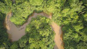 selva peruana